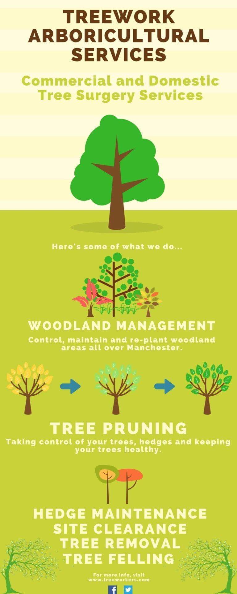 Treework Arboricultural Services